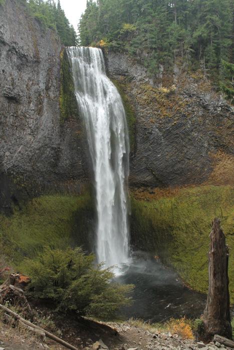 Autumn color at Salt Creek Falls